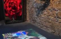 Museo dell'Infiorata