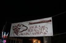 Sagra del bufalotto e del vino asprino