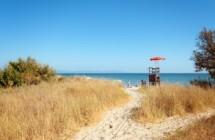 Spiaggia e bosco della Sterpaia
