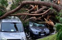 """Una delle zone più colpite dalla """"Katrina toscana"""""""