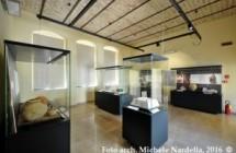 Giornate FAI 2016 – Museo Civico Archeologico e chiese storiche sanpaolesi