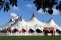 Si prepara la protesta contro il Circo Orfei