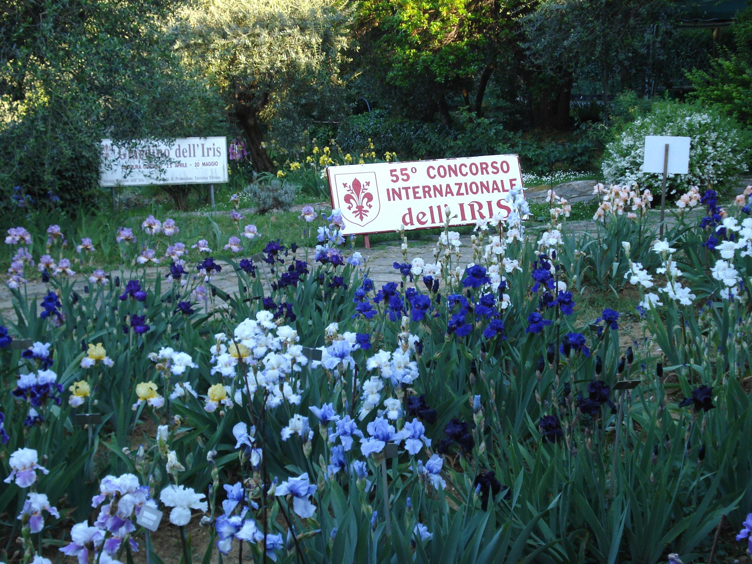 Giardino dell iris il giaggiolo in fiorentino firenze - Giardino dell iris firenze ...