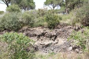 Monte Nuovo: l'ultimo vulcano dei Campi Flegrei
