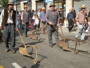 Il festival delle sagre