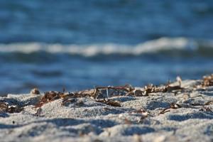 Le spiagge di quarzo