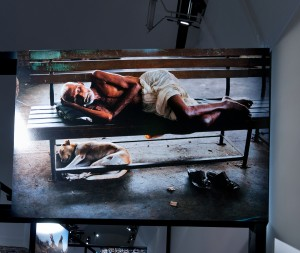 Mostra fotografica Steve McCurry