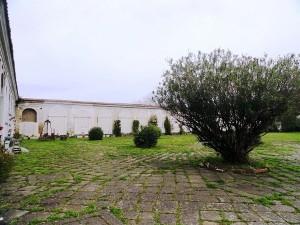 Cimitero delle 366 fosse: storie di vite