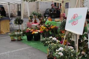 Giornate FAI: Festa del fiore