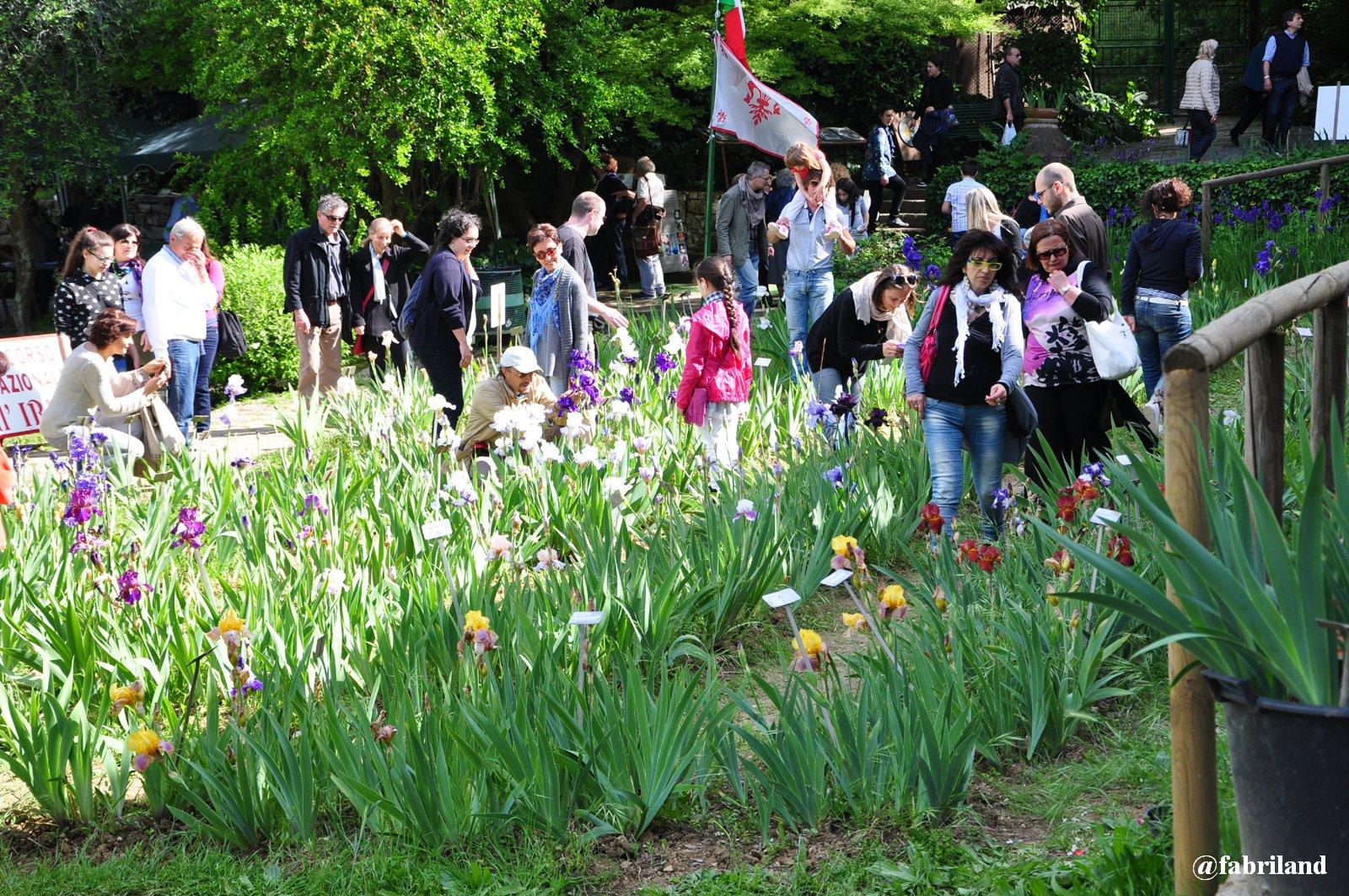 Il giardino dell iris al piazzale michelangelo firenze - Giardino dell iris firenze ...