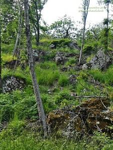 Castello di Citerna: quello che ne è rimasto