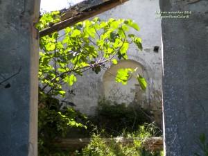 Castello di Montauto: ruderi di storia