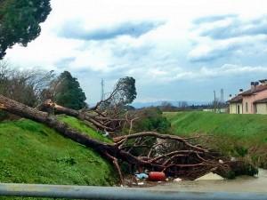 Il tornado sul paese