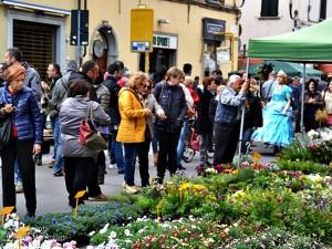Impazza Ludicomix 2015 – Floralia