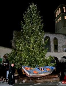 Albero di Natale per i migranti ad Assisi