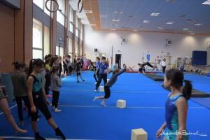 Stage di ginnastica artistica alla Polisportiva Casellina