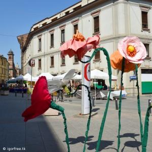 Primavera in centro e Photo marathon