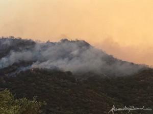 Incendio sulle colline pattesi