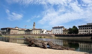 Animali fantastici in riva all'Arno