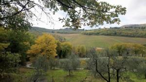 I colori dell'autunno in Chianti