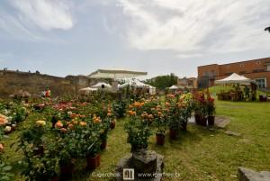Terni in fiore 1ª edizione, mostra mercato del florovivaismo